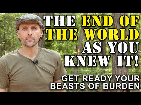 GET READY! YOU WONT BE ABLE TO AFFORD ANYTHING | IT IS THE END OF THE WORLD AS YOU KNOW IT