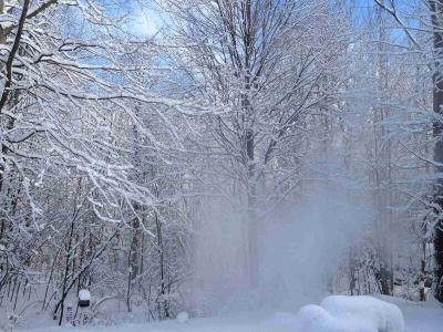 Snowstorm Survival: The Ultimate Guide
