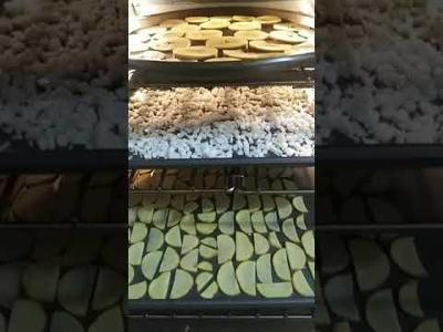Dehydrating In The Oven! Preppers This Is An Option.