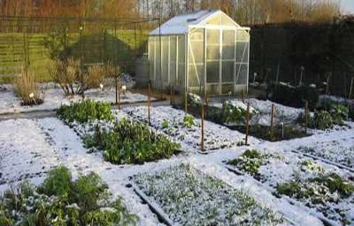 How to Build Unheated Greenhouses for Winter Harvests and Year-Round Gardening