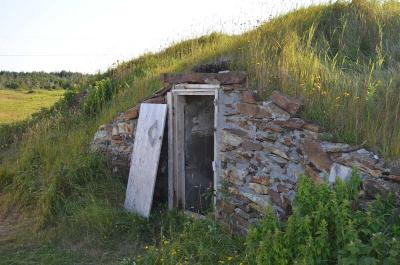 Root Cellar Basics: What You Need to Know
