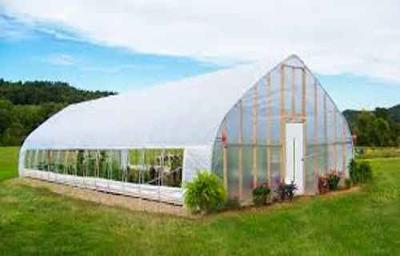 Tips so You Can Grow Vegetables in the Winter – Eat Year Round From Your Garden